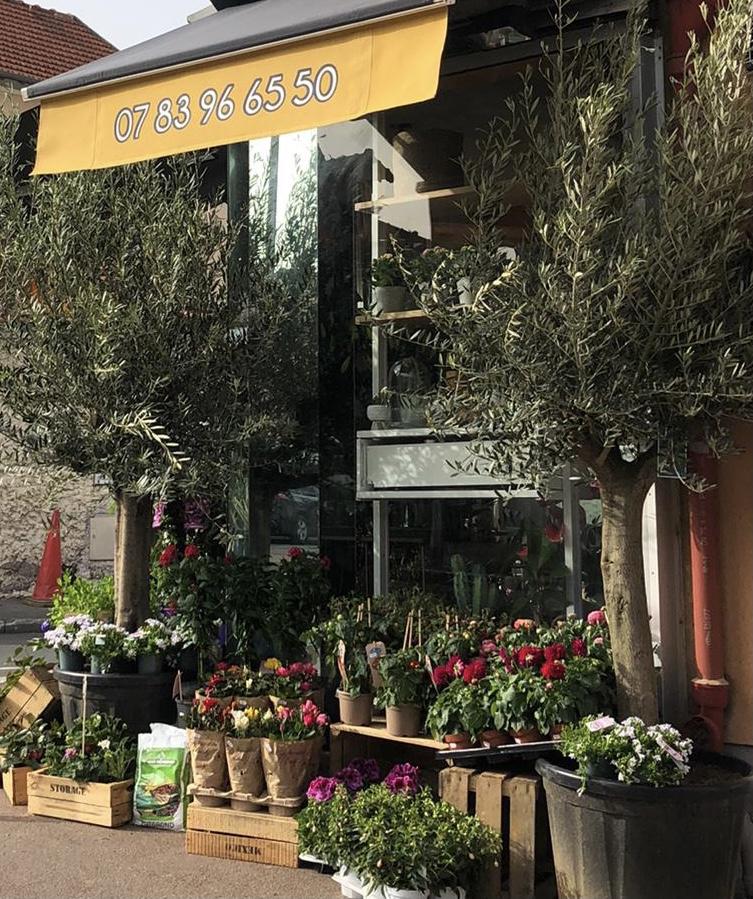 Etalage de plantes et de fleurs sur le trottoir